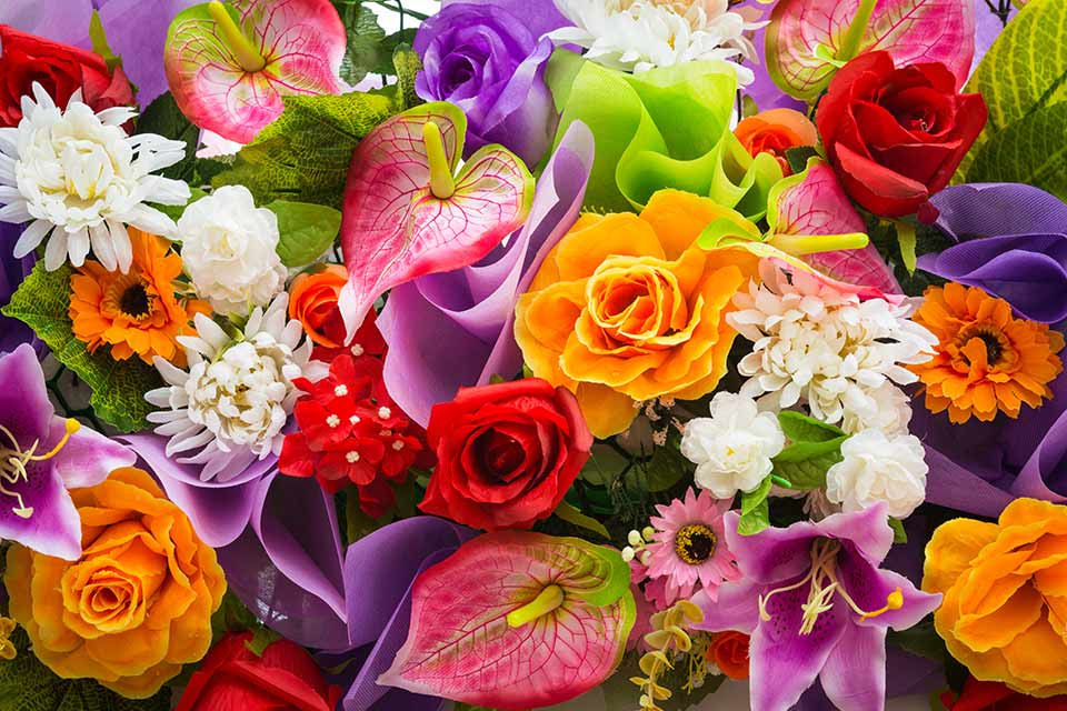 Afbeeldingsresultaat voor herfstbloemen