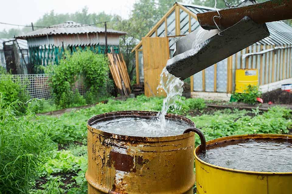 Goedkope Tuin Ideeen : Budget tips voor jouw tuin
