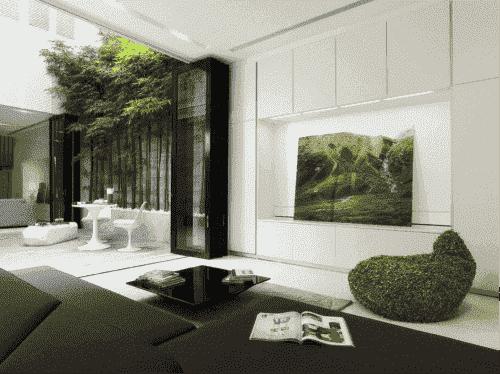 Bamboe op het moderne terras