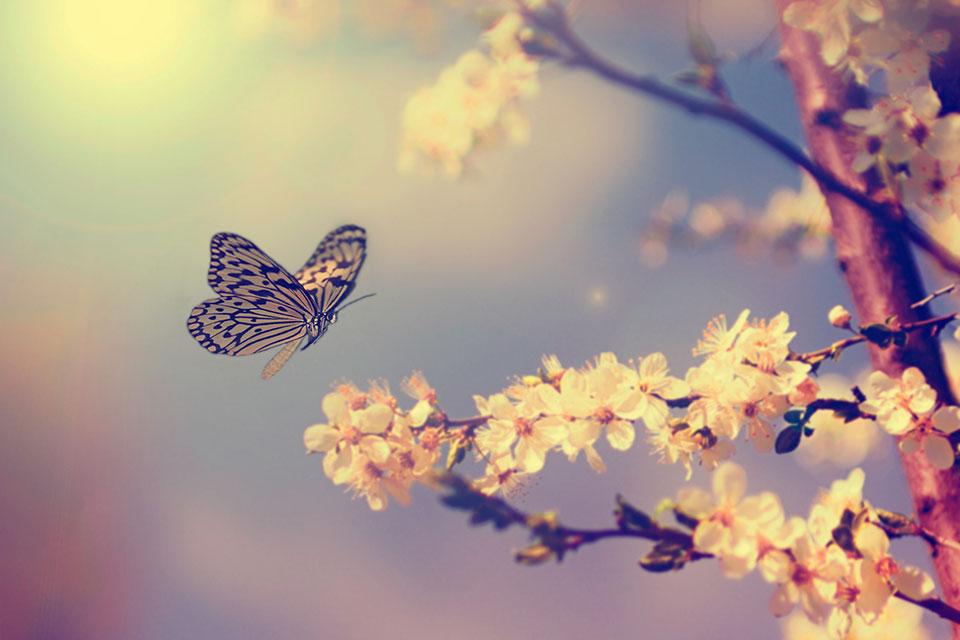 De lente musthaves op een rij