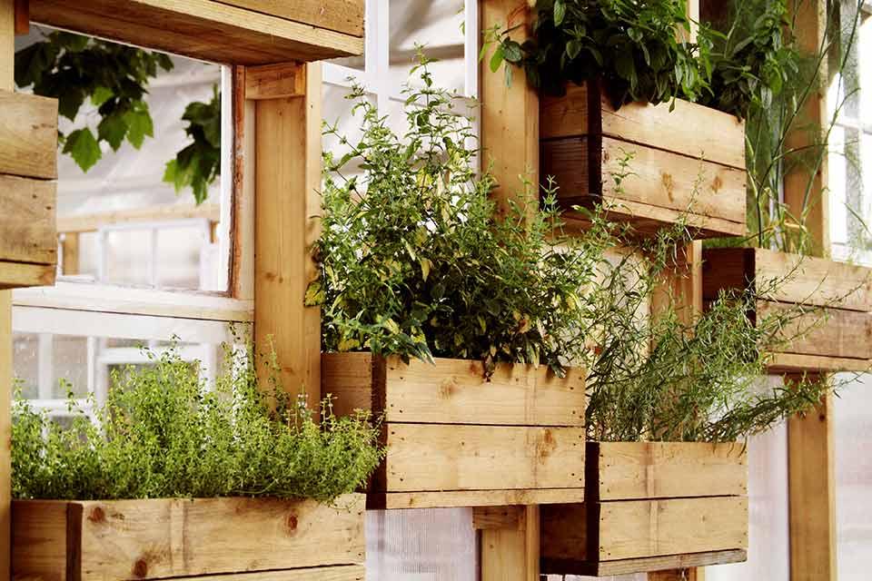 5 Simpele tuin ideeën voor 2013