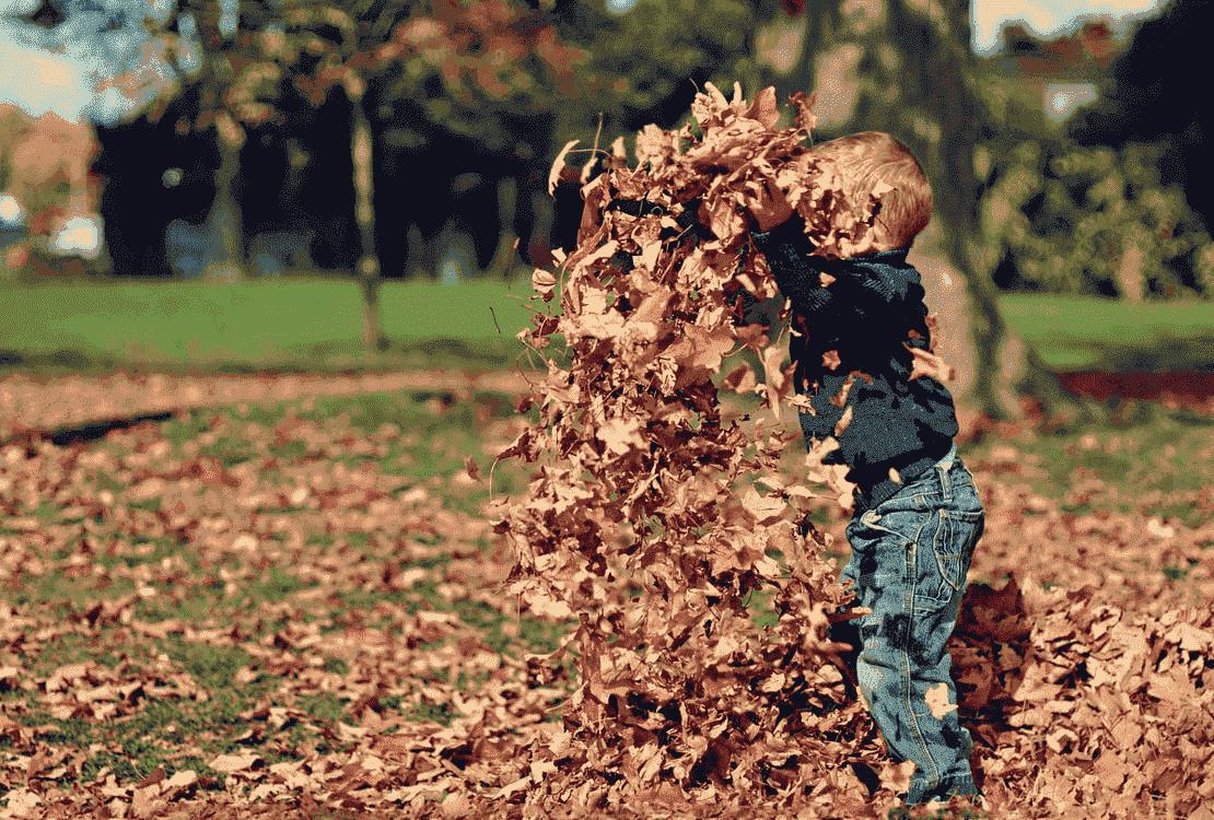 How To: Een kindvriendelijke Tuin