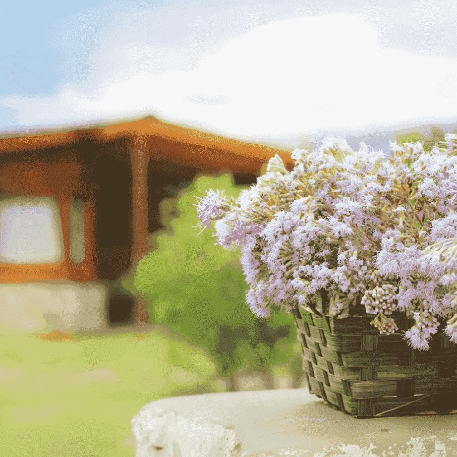 Is jouw tuin klaar voor de lente?