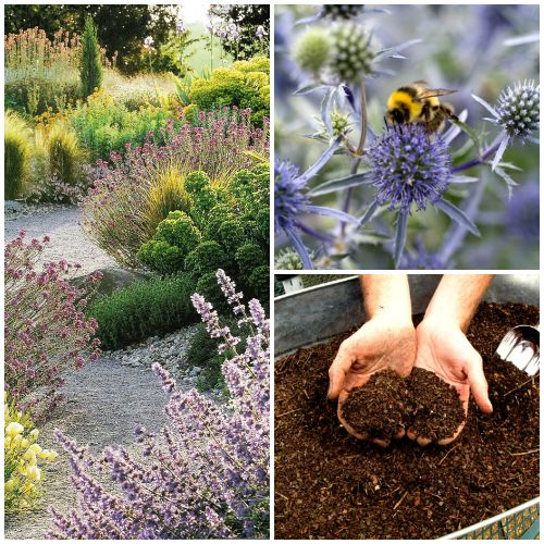 goede voornemens tuin