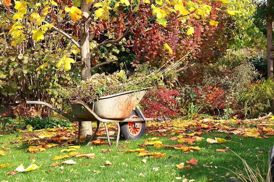herfstblad opruimen